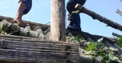 Trivalea Mosteni – interventie SVSU – degajare arbore 1